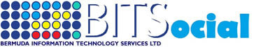 Bermuda Information Technology Services